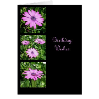 Birthday Wishes Triptych Card