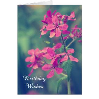 Birthday Wishes,Vintage Pink Phlox Floral Petals Card
