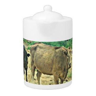 Bisbee Cows Tea Pot