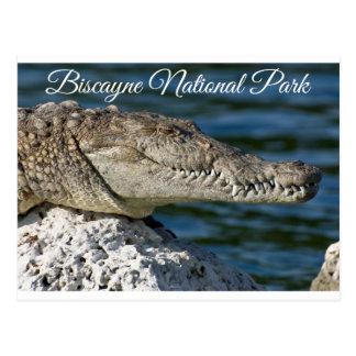 Biscayne Bay Park  Miami Beach Florida Postcard