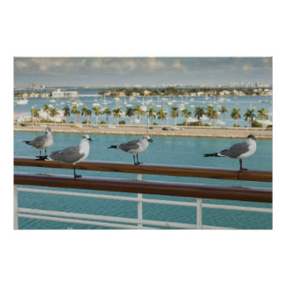 Biscayne Bay seen from cruise ship's deck Poster