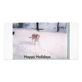biscuit snow, Happy Holidays Photo Card Template