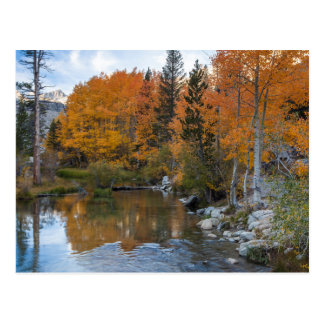 Bishop Creek. Outlet and fall color Postcard