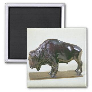 Bison, 1907 square magnet
