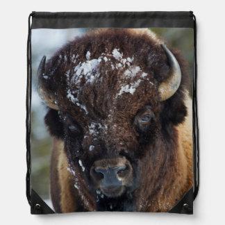 Bison Bull, winter 1 Cinch Bags