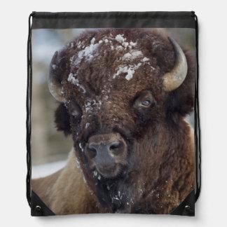 Bison Bull, winter 3 Cinch Bag