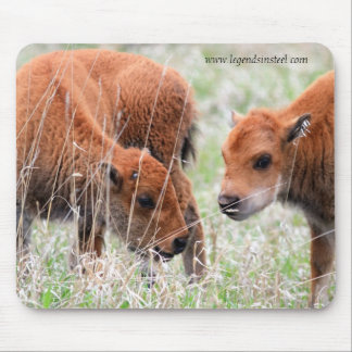 Bison Calves Mouse Pad