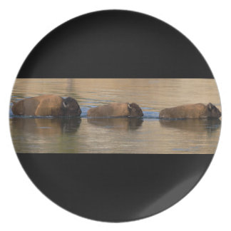 Bison Crossing River Plate