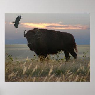 Bison & Eagle Poster