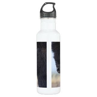 bison face 710 ml water bottle