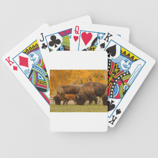 Bison Family Nation Bicycle Playing Cards