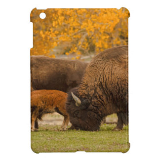 Bison Family Nation iPad Mini Covers