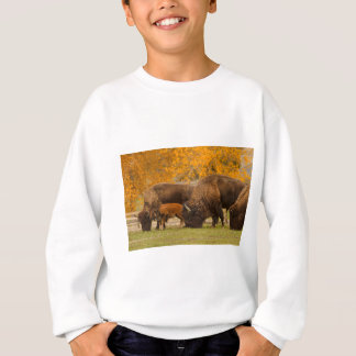 Bison Family Nation Sweatshirt
