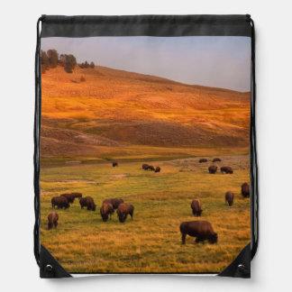 Bison Grazing on Hill at Hayden Valley Backpacks