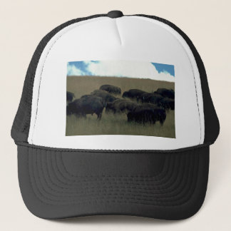 Bison Herd In Dry Grass Trucker Hat