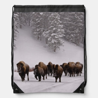 Bison in Winter Drawstring Bags