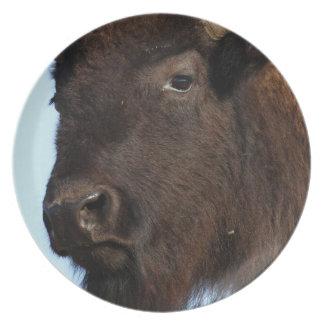 bison lady dinner plates
