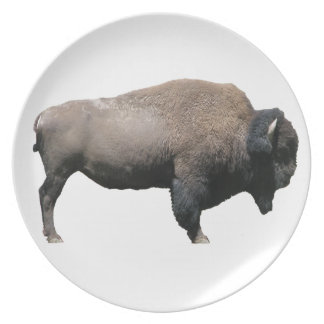 Bison Party Plates