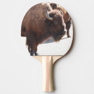 Bison Ping Pong Paddle