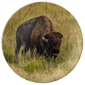 Bison Plate
