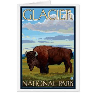 Bison Scene - Glacier National Park, MT Card