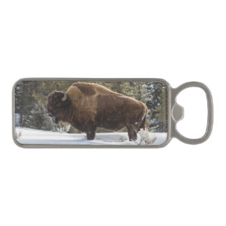 Bison standing in snow magnetic bottle opener