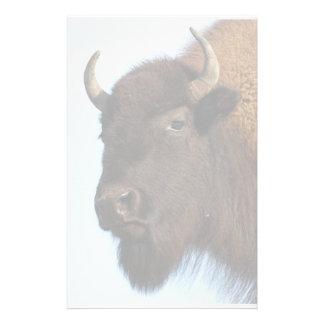 bison stationery