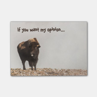 Bison Sticking His Tongue Out - Humor - Funny Post-it® Notes
