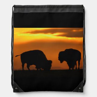 bison sunset drawstring bags