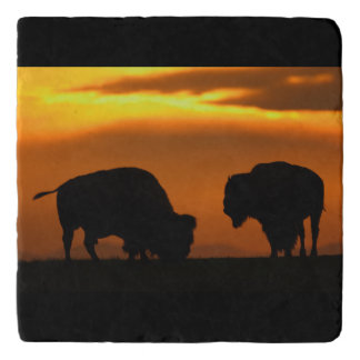 Bison Sunset Trivet