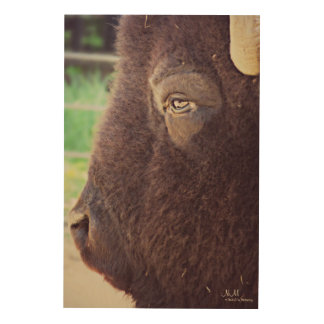 Bison Wood Wall Art