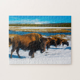 Bison Yellowstone Wyoming. Jigsaw Puzzle
