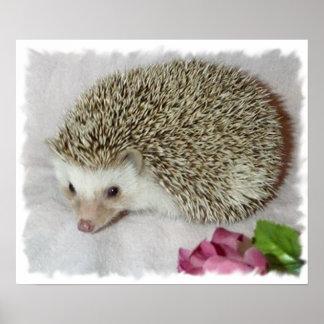 Bitsy the Hedgehog  Poster