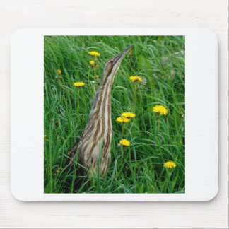 Bittern, northern Ontario water bird Mouse Pad