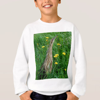 Bittern, northern Ontario water bird Sweatshirt