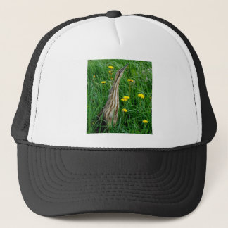 Bittern, northern Ontario water bird Trucker Hat