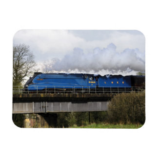 """""""Bittern"""" Old Steam Train Locomotive Fridge Magnet"""