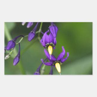 Bittersweet nightshade (Solanum dulcamara) Sticker