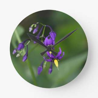 Bittersweet nightshade (Solanum dulcamara) Wall Clock