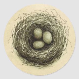 Bitty Bird Nest Classic Round Sticker