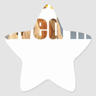 BJJ Saved Me Star Sticker