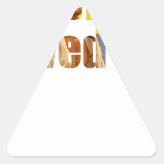 BJJ Saved Me Triangle Sticker