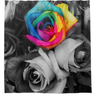 blach,white splash roses.