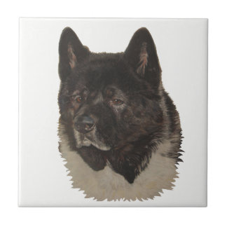 black akita with white chest dog portrait art tile