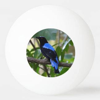 Black and Blue Ping-Pong Ball