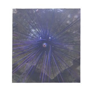 Black And Blue Sea Urchin Notepads