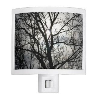 Black and Gray Tree Nite Light