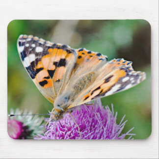 Black and Orange Butterfly on Flower Mouse Pad
