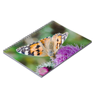 Black and Orange Butterfly on Flower Notebook