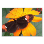 black and orange photographic print